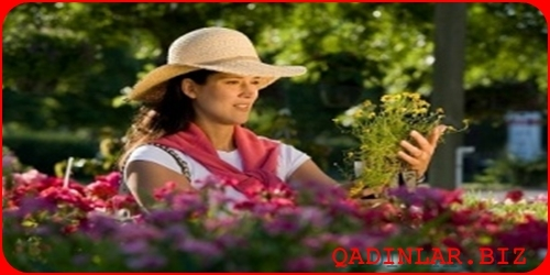 Bahar allergiyasına bitki mənşəli həll