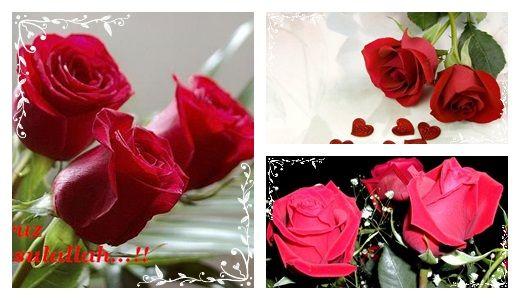 Biz bu güllerden de gözəlik=)