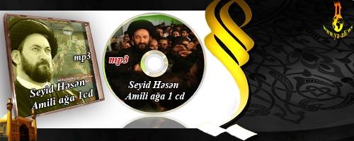 Seyid Hesan Amili