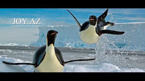 National Geographic Oktyabr 2012