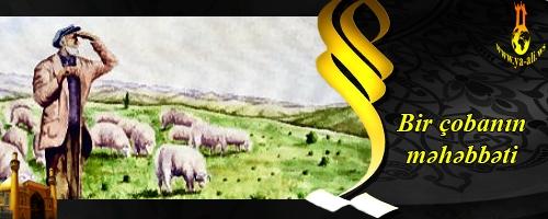 Bir çobanın məhəbbəti