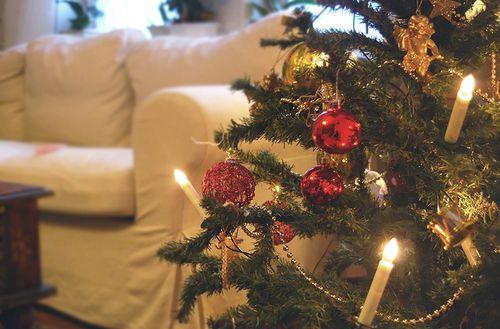 Merry Christmas [2]