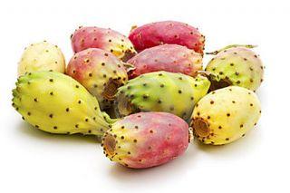Плоды кактуса - опунция