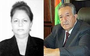 Nizami Sadiqov - Elmira Şükürova işbirliyi