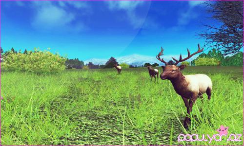 Deer Driv 1.5 + pulsuz