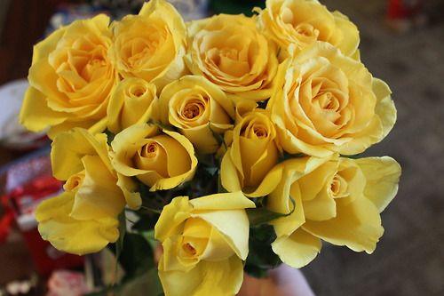Sana sarı laleler aldım çiçek pazarından =)