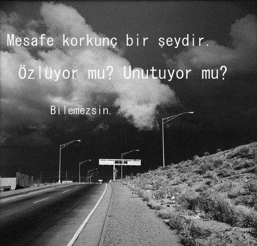 Sonunu bilə-bilə sevərsən bəzən