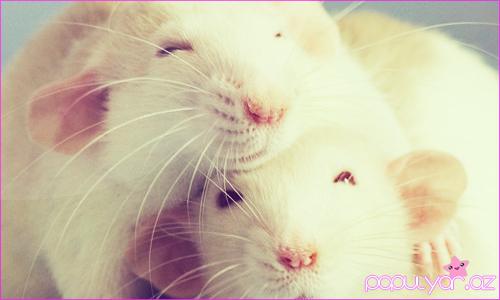 Smile time :)
