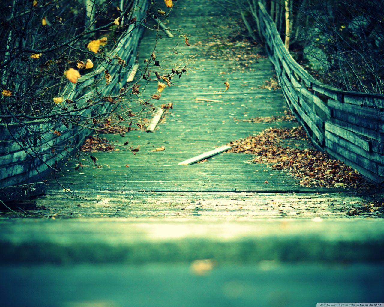 Autumn [18]