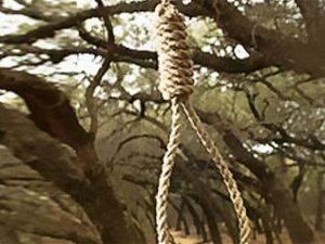 Daxili Qoşunların əsgərinin ağacdan asılmış meyiti tapılıb