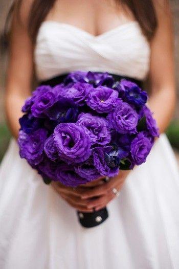 The Violet