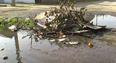 Kanalizasiya suları daşaraq evlərə dolub (VİDEO)