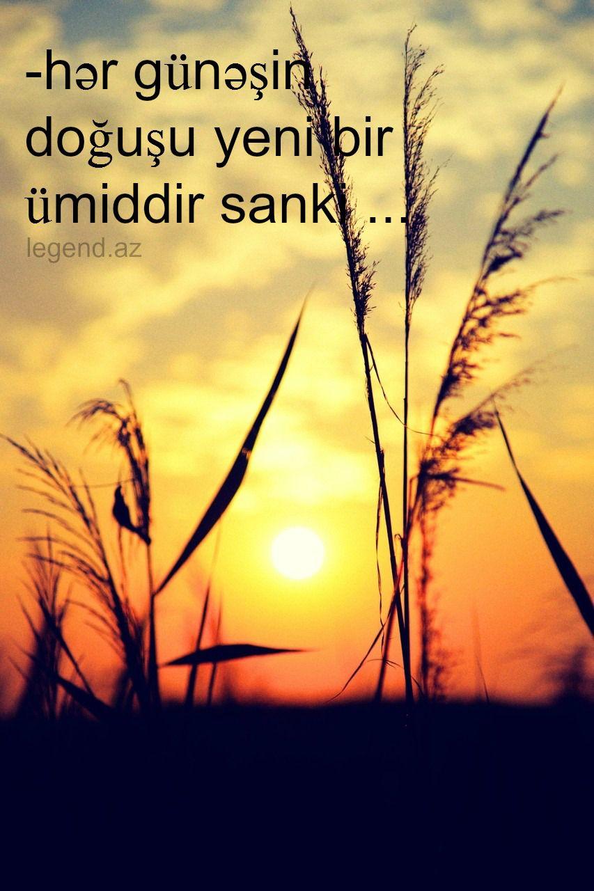 Hisslərim (3)