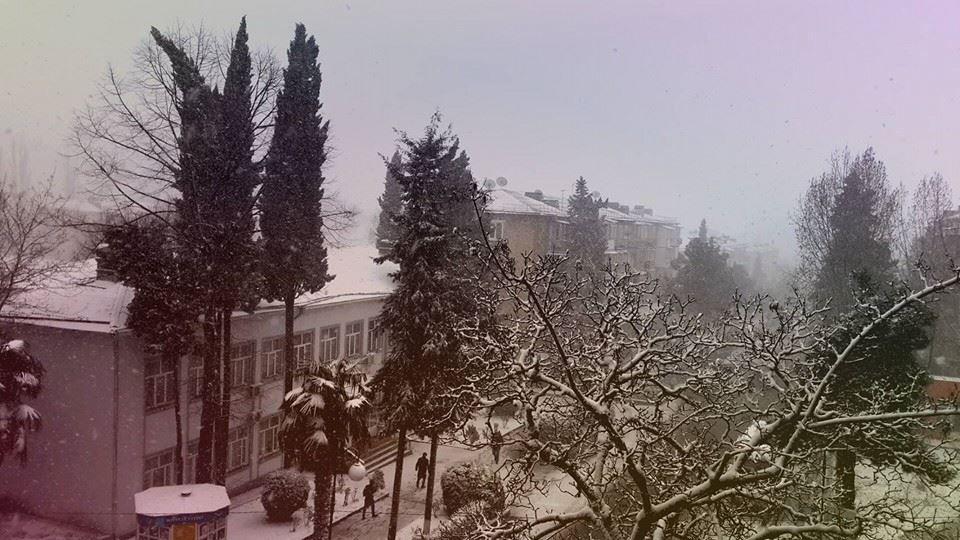 Qariş qariş ŞəkimdəN