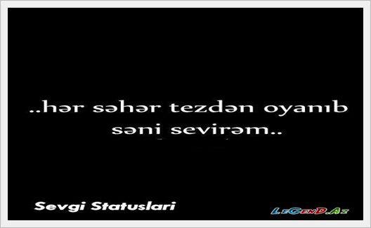 Səni Sevirəm