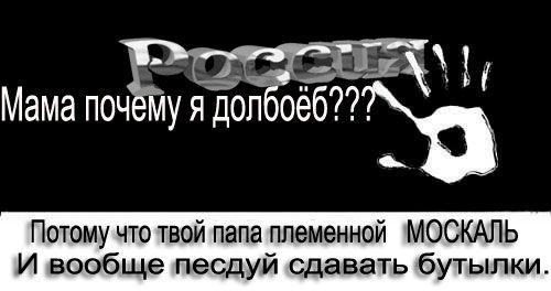 Похищенные террористами на Луганщине члены миссии ОБСЕ вышли на связь, - СМИ - Цензор.НЕТ 3659