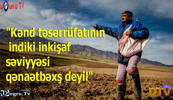"""""""Kənd təsərrüfatının indiki inkişaf səviyyəsi qənaətbəxş deyil"""""""