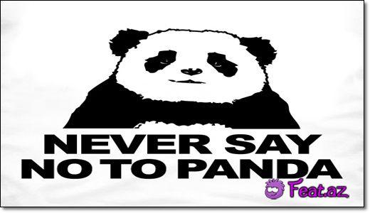Never say no panda!