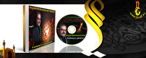 Seyyid Muhammad Amili  حاج سید محمد عاملی