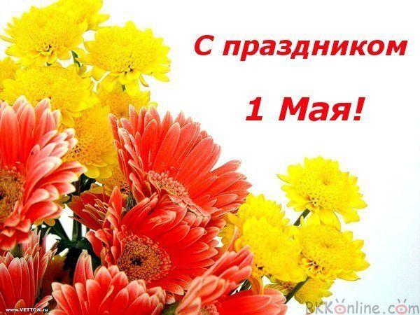 http://imgs.su/users/26383/1430495532.jpg