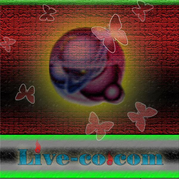 http://imgs.su/users/5951/1211650005.jpg