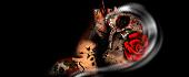 http://imgs.su/tmp/2012-10-16/1350392584-467.jpg