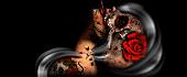http://imgs.su/tmp/2012-10-16/1350392726-467.jpg