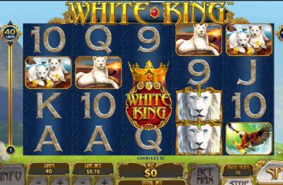Бывают ли игровые онлайн автоматы с выводом денег?