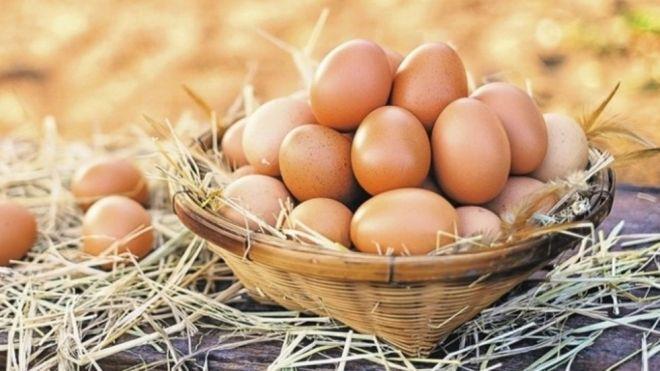 Yumurta niyə bahalaşıb?