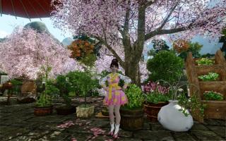 В ArcheAge предлагают ханбок по случаю весны