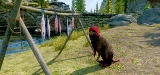 В The Elder Scrolls V: Skyrim можно играть за домашнего кота