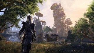 The Elder Scrolls Online будут развивать параллельно с TES6